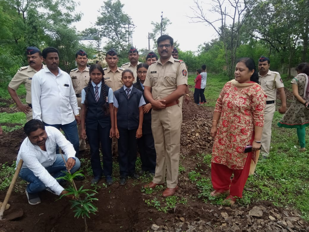 Tree Plantation Program